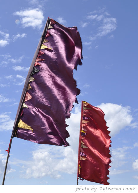 funky flags at the Devonport food and wine festival